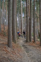 Forestry lands, if it wasn't for them then UK mountain biking would not be thriving as much as it is.