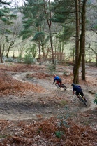 I forget the name of the trail but it was much drier than anything I rode the entire time I was in the UK. Surrey is a lovely little spot.