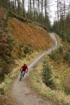 40km of purpose built mountain bike trails might not seem much but it's varied, fun and, most importantly, rideable year round.